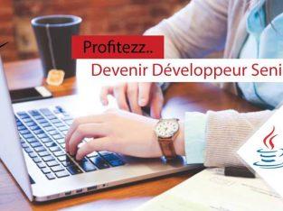 Développeur Java_JEE PRO