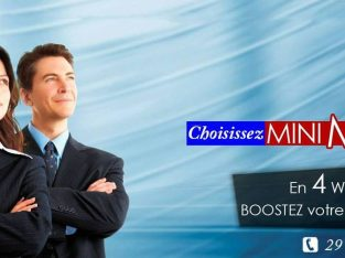 Mini MBA (Mini Master of Business Administration)